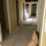 東京都世田谷区のスポーツジムにて、置床工事を行いました。(フリーフロアCPフクビ化学工業)